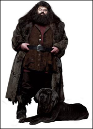 image de Hagrid - Harry Potter